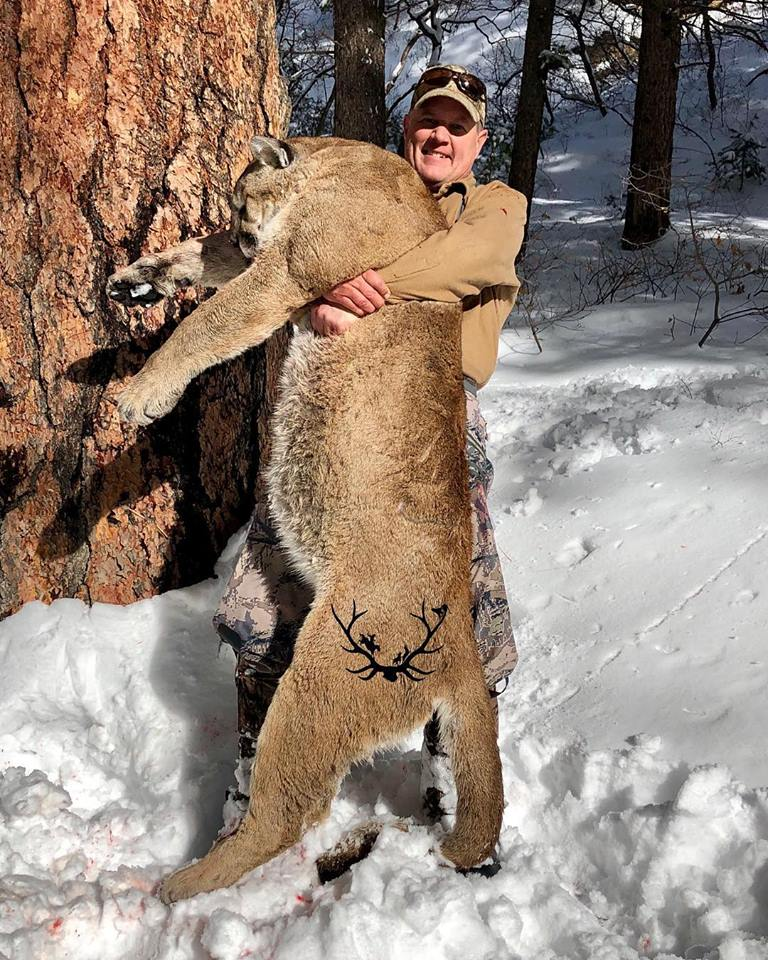Successful mountain lion hunt