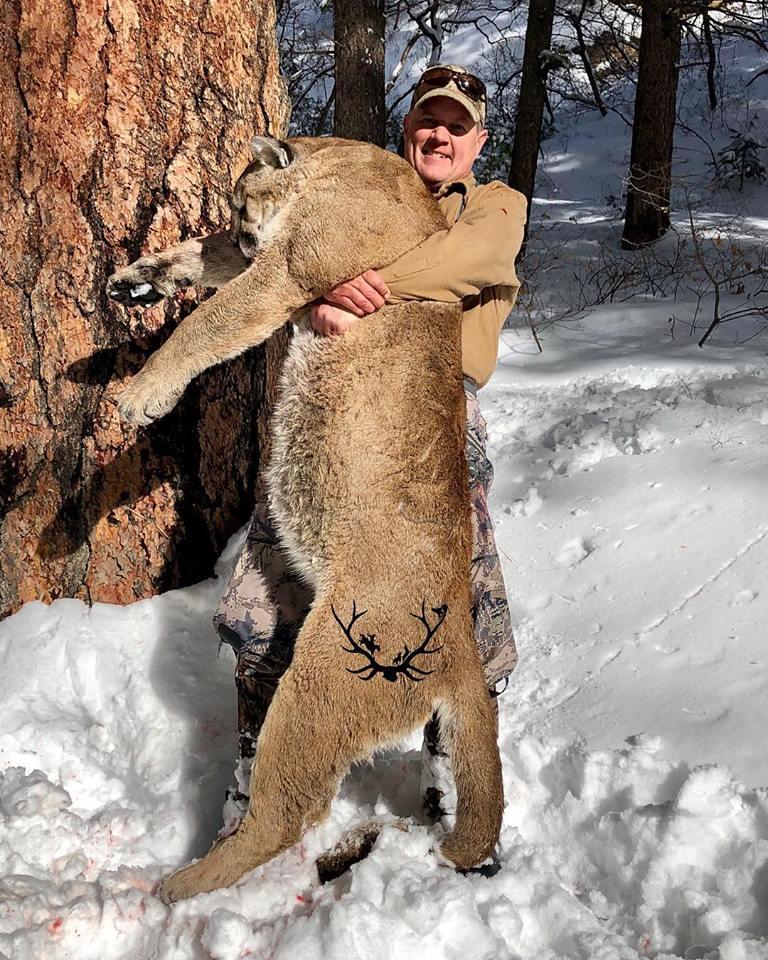 Successful mountain lion hunt