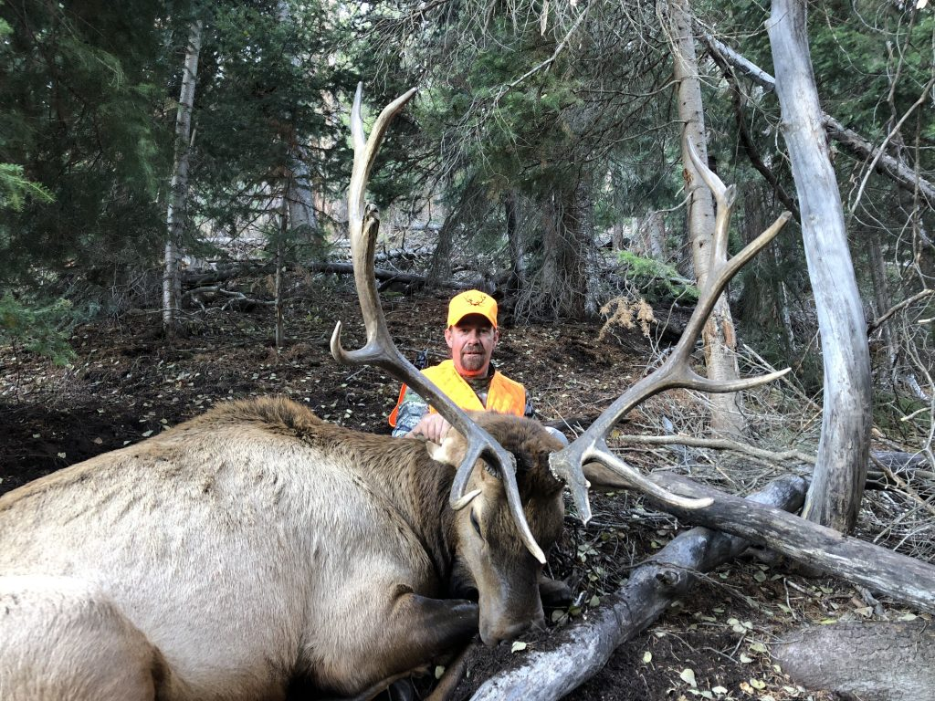 Unit 61 trophy elk taken during 2nd rifle season with Allout Guiding & Outfitting
