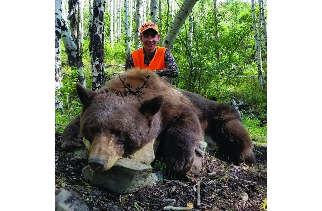 Colorado Unit 61 Bear