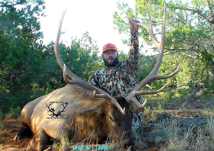guided elk hunt in unit 61 with Allout outfitters