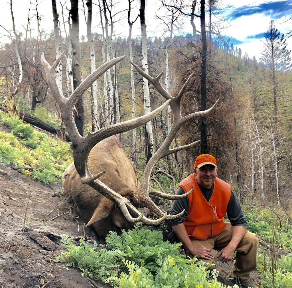 Colorado unit 61 Trophy Elk 2019